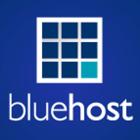 Logo_bluehost_dian-hasan-branding_7