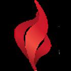 Logo_Bolton-&-Co_www.boltonco.com_dian-hasan-branding_Pasadena-CA-US-2
