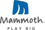 Logo_Mammoth-Mt-Ski-Resort_dian-hasan-branding_CA-US-1