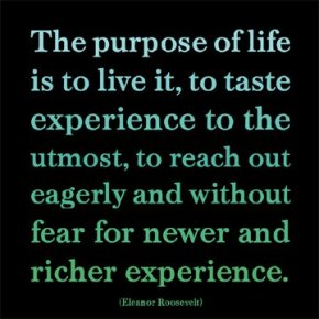 Quote_Eleanor Roosevelt on the purpose of life_US 1