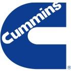 Logo_Cummins_dian-hasan-branding_US-1