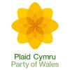 Logo_Plaid-Cymru_Party-of-Wales-Political-Party_www.partyof.wales_-force=1_dian-hasan-branding_UK-5