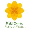 Logo_Plaid-Cymru_Party-of-Wales-Political-Party_www.partyof.wales_-force=1_dian-hasan-branding_UK-5