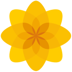 Logo_Plaid-Cymru_Party-of-Wales-Political-Party_www.partyof.wales_-force=1_dian-hasan-branding_UK-6